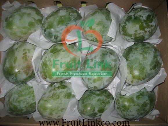 Fresh Mango by Fruit Link