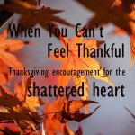 When You Can't Feel Thankful... Thanksgiving encouragement for the shattered heart