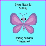 Social Butterfly Sunday link-up