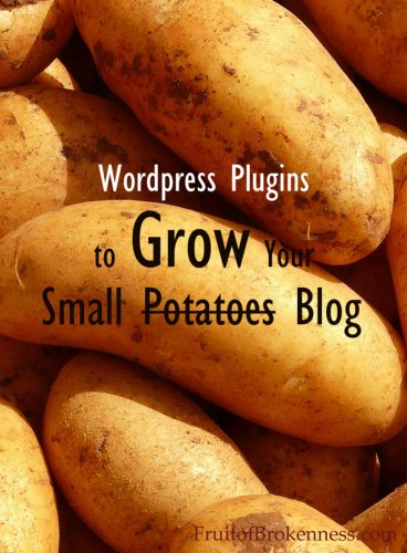 Wordpress Plugins to Grow Your Small Potatoes Blog