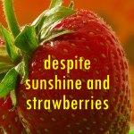 despite sunshine and strawberries