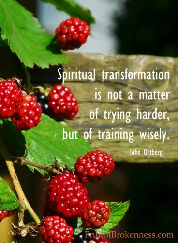 Spiritual transformation is not a matter of trying harder, but of training wisely. John Ortberg