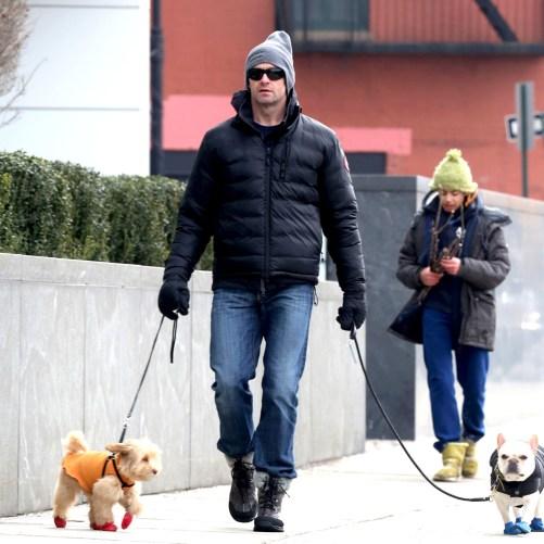 Hugh Jackman walking his dogs