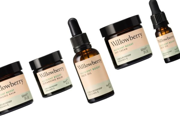 Willowberry Black Friday Deal