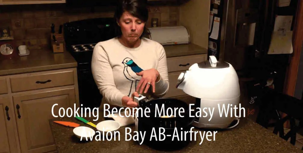 Avalon Bay Hot Air Fryer Ease of Use