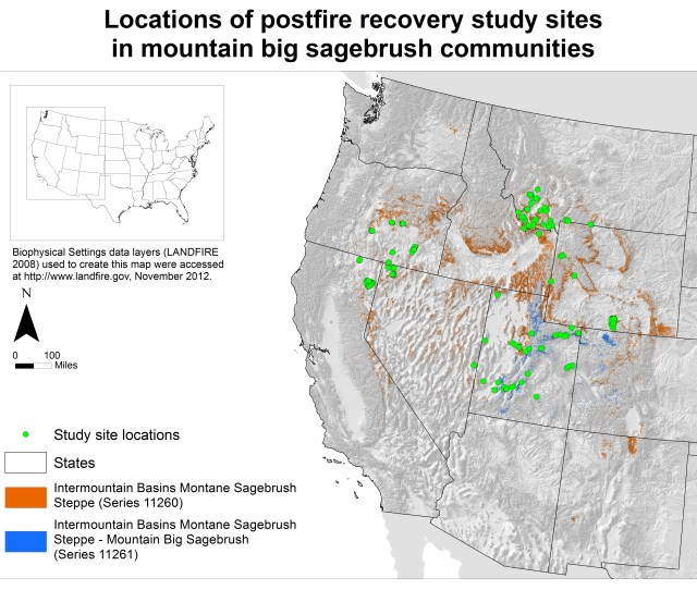 Sites In Mountain Big Sagebrush Communities In Some Cases Multiple Study Sites In Close Proximity E G Those Of Moffet Et Al 432 And Goodrich Et