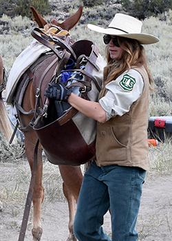 A woman wearing a cowgirl hat tends to a mule used to carry all the teams gear.