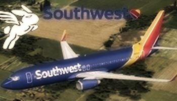 Welcome to Perfect Flight » FSX/FS2004 – Boeing 737-800 Southwest