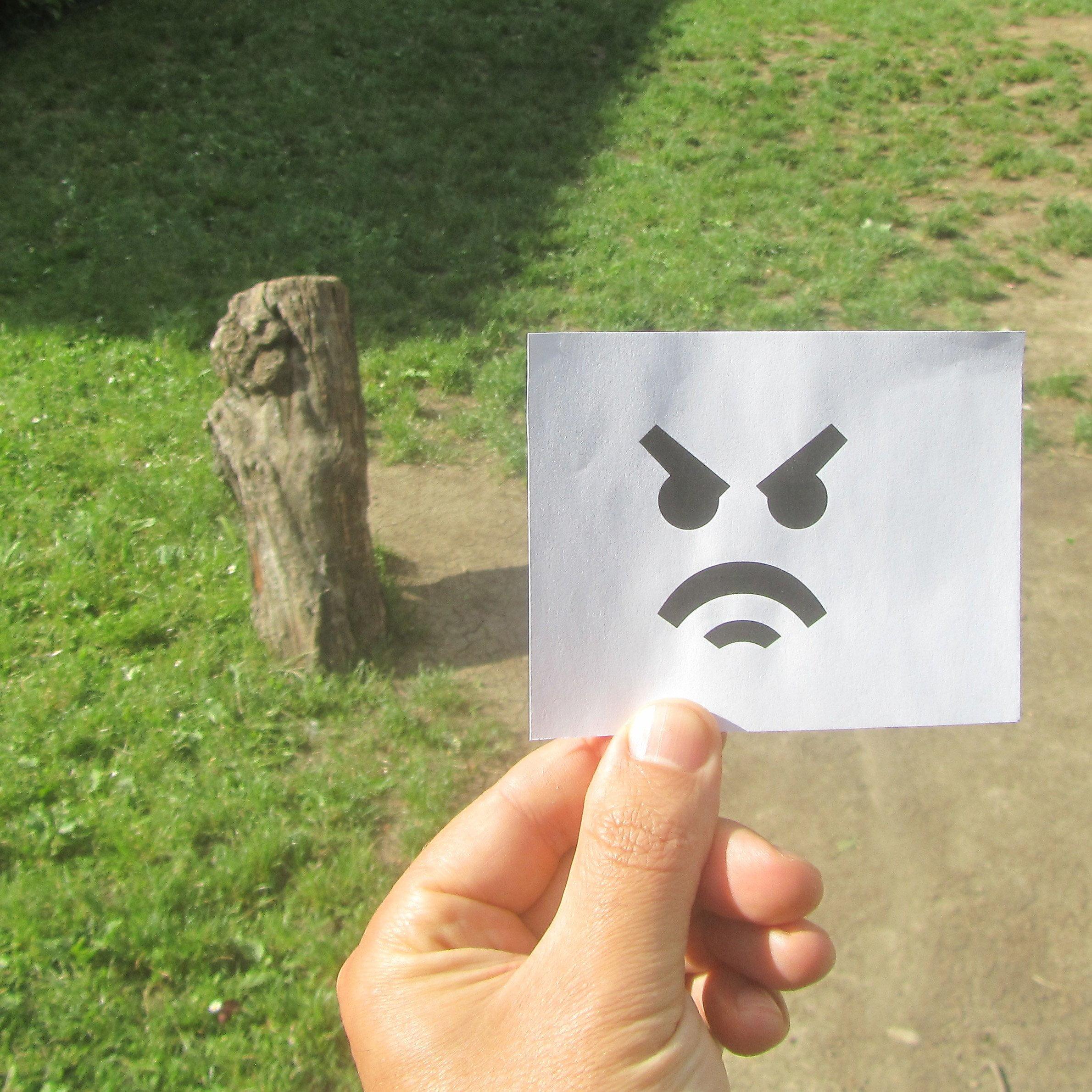 FSD Emoji on real life