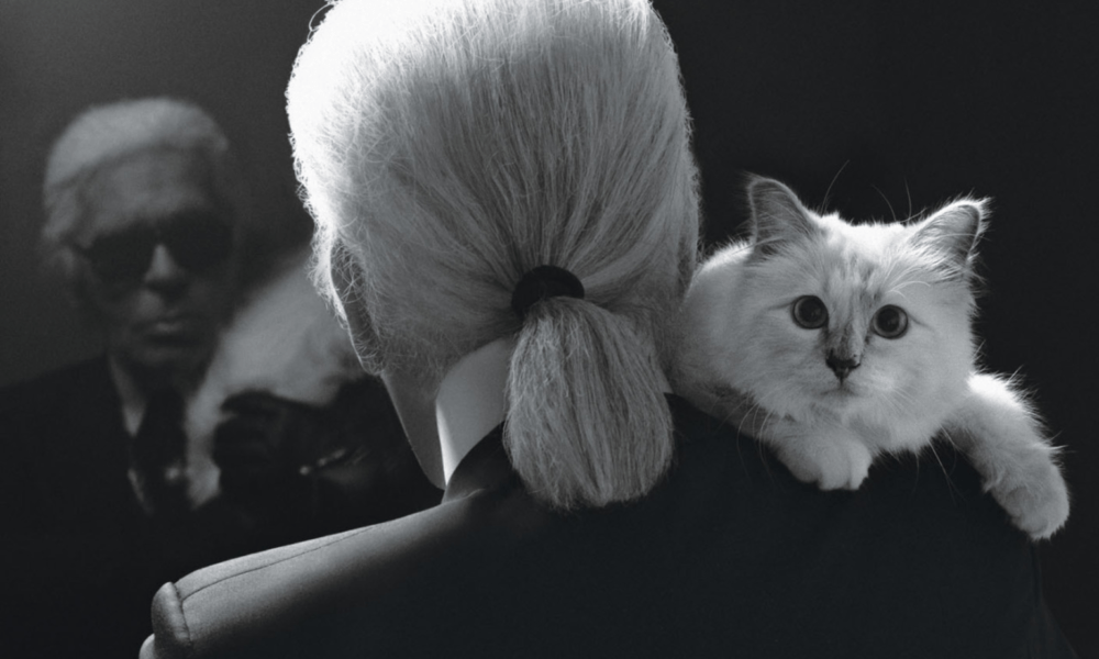 "KARL LAGERFELD HAD DESIGNATED HIS CAT ""CHOUPETTE"" AS HEIR"