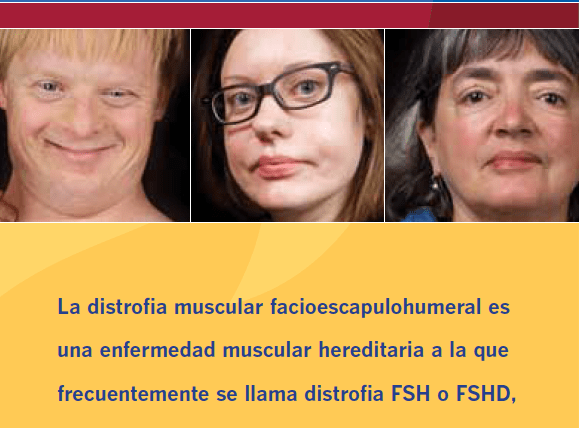 About FSHD brochure in Spanish