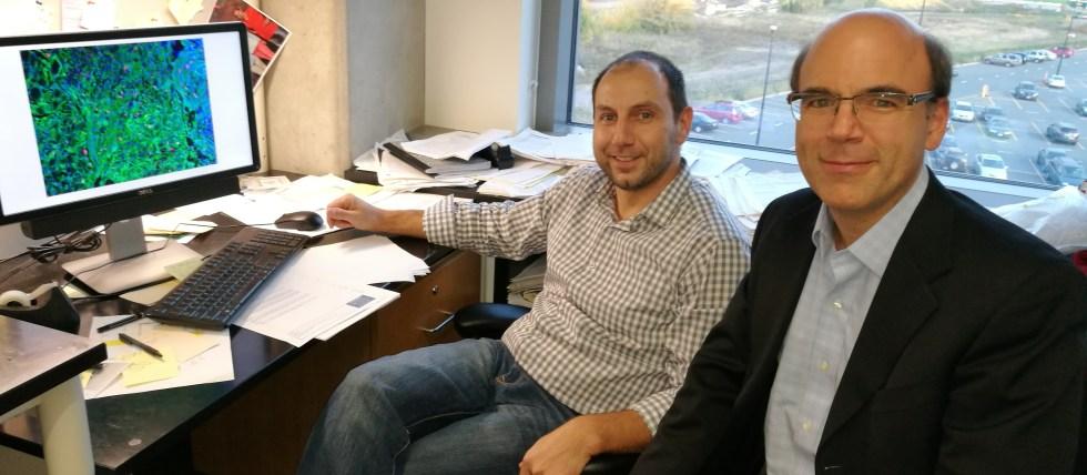 Drs. Darko Bosnakovski and Michael Kyba