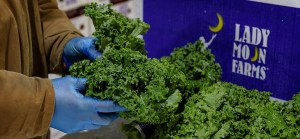 Lady Moon Farms Fresh Kale