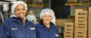 Two employees in the distributing unit