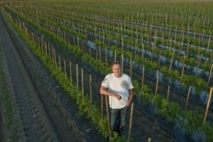 farmer on his farm