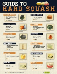 Guide to Hard Squash
