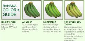 banana color guide