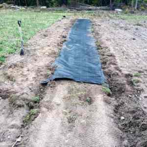 Naturligtvis tog rullen slut när jag var halvvägs. Då är det bra att ha ytterligare hundra meter liggande i förrådet. Skarven får man försöka täcka så gott det går.