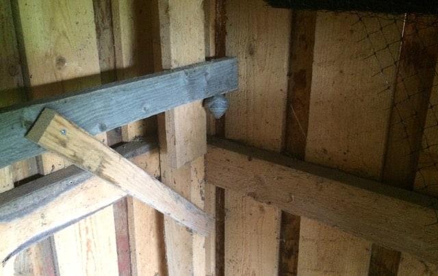 Att ta bort ett getingbo när det är litet är det rätt lätt. Bara att peta ner med ett kvastskaft.
