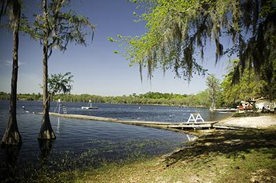 10 Free Things To Do Around Florida State University