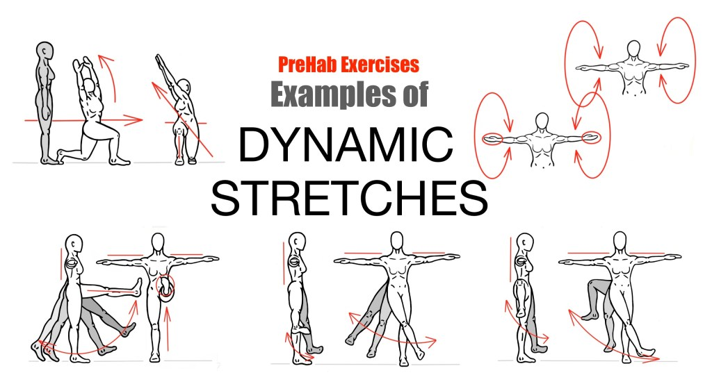 Examples of dynamic stretching exercises!