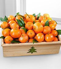 Holiday Satsuma Mandarin Crate