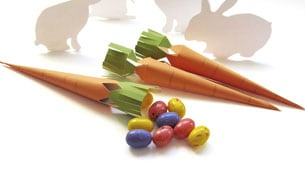 carrot_treat_boxes