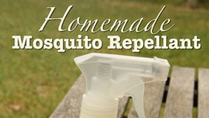 Mosquito-Repellant_intro