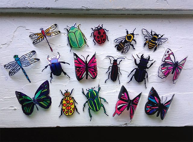 plasticbottle-insects-3
