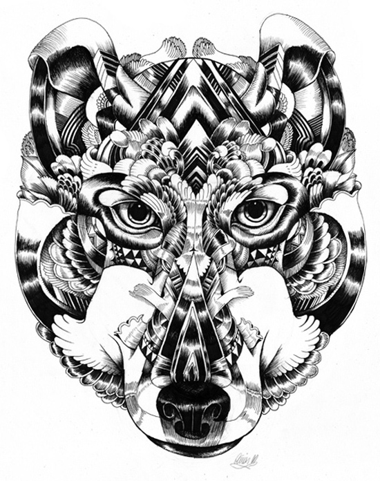 wildlife11