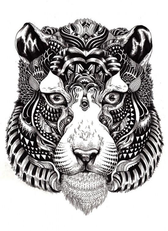 wildlife9
