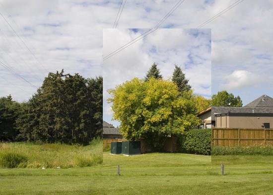 landscapepermutations3