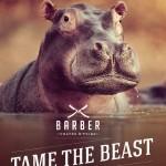 Barber Campaign3z