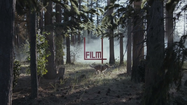 Film4 Identity Spot