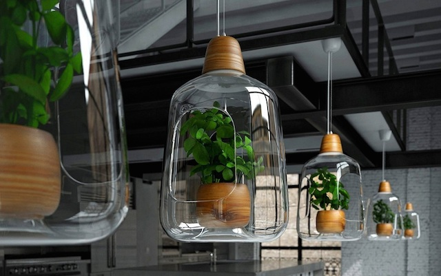 Lamps For Plants By Lightovo