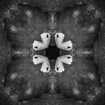creaturesgodsandarchitectures-13