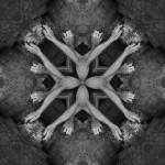 creaturesgodsandarchitectures-16