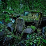 Car Graveyards Photography-17