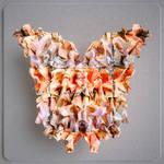 butterflyeffect-13