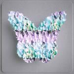 butterflyeffect-2b