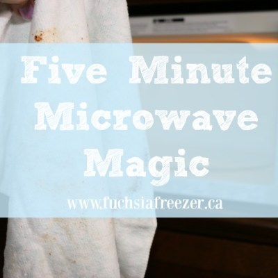 Five Minute Microwave Magic
