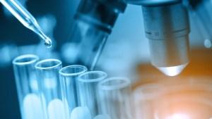 Ethylene amines: An insight