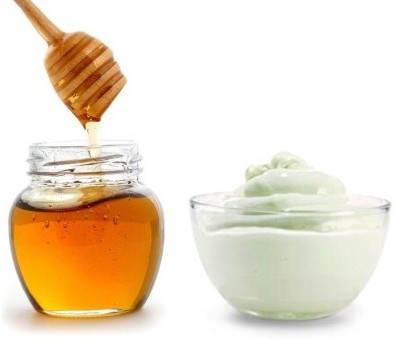 Resultado de imagen para yogur y miel de abeja