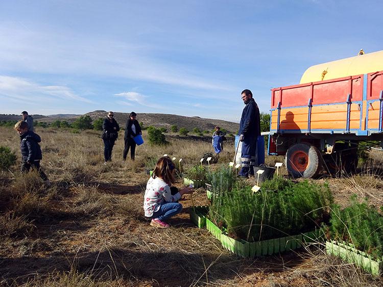 Plantación Día del Árbol