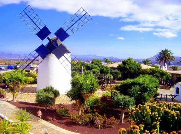 Informationen zu Fuerteventura, Urlaub und Reisen