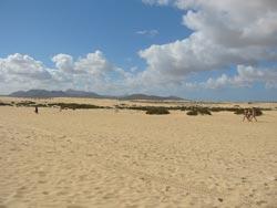 Der Strand von Corralejo