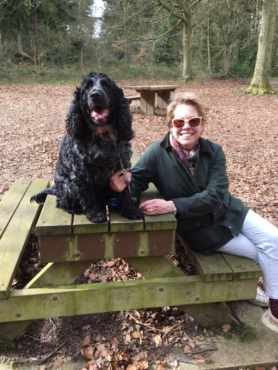 . BACTON WOODS WITH THE FAMILY:Ken Johnson. Well handled exposure as it's tricky to hold detail in the predominately black spaniel. Pleasant family snap but possibly of more interest to family than to others. Sorry.