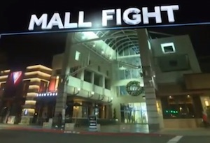 1 mall fight