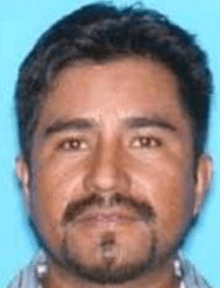 County in issued offense pinellas sex warrant