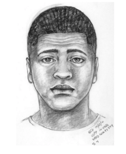 ID #16-530 Sketch of suspect